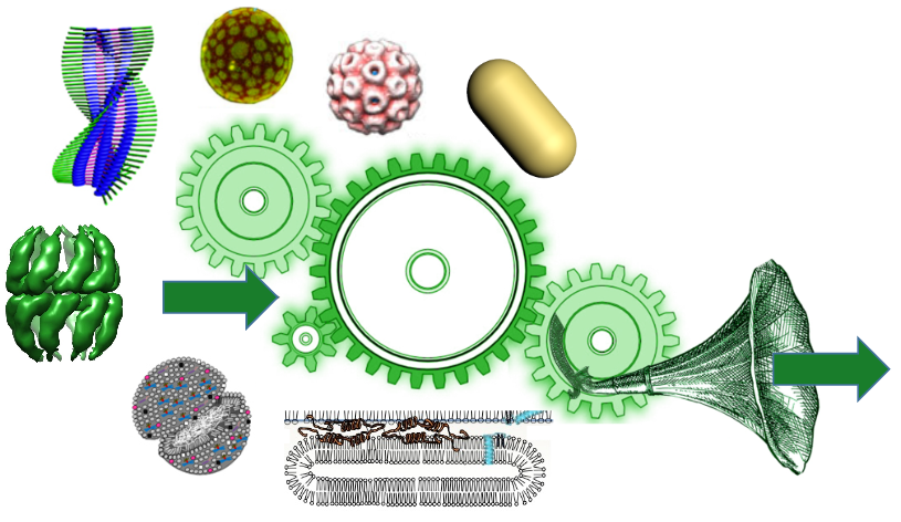 nanobiosome.png
