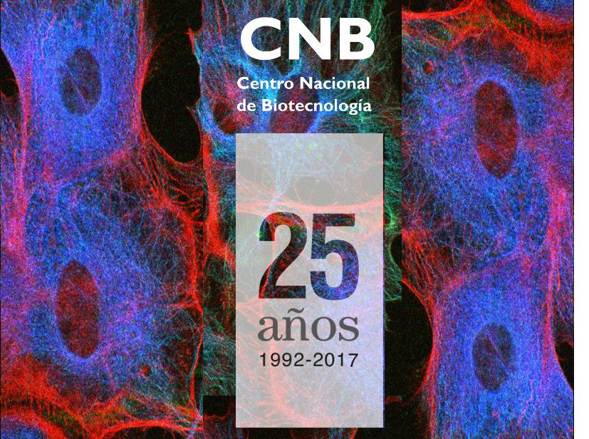 cnb4.jpg