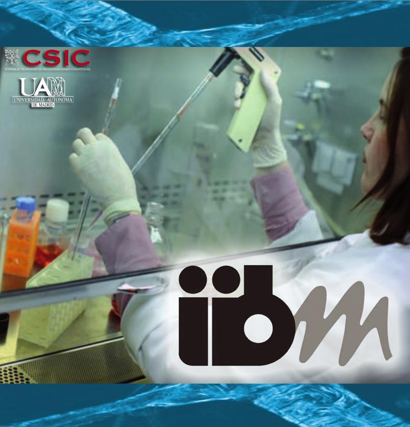 iibm2as.jpg